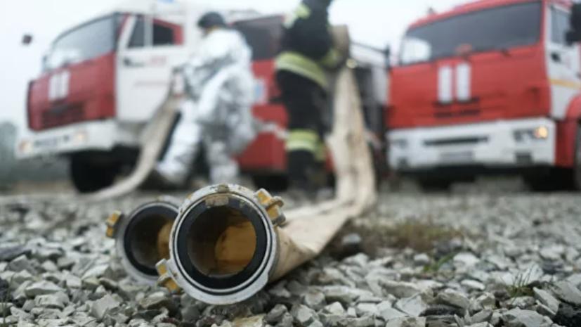 В России ликвидировали 64 лесных пожара за сутки