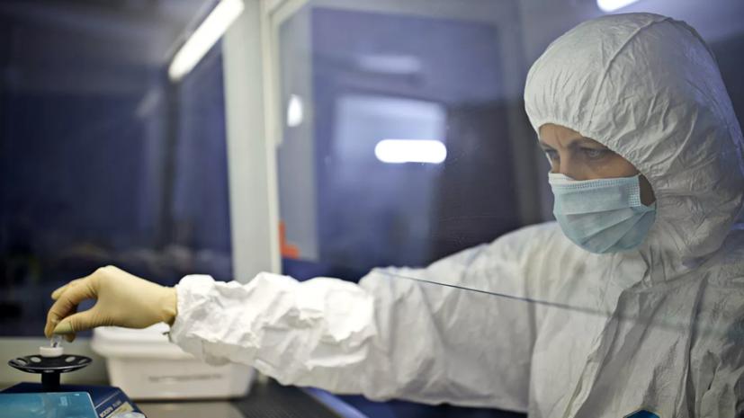 Более 31,5 млн тестов на коронавирус проведено в России
