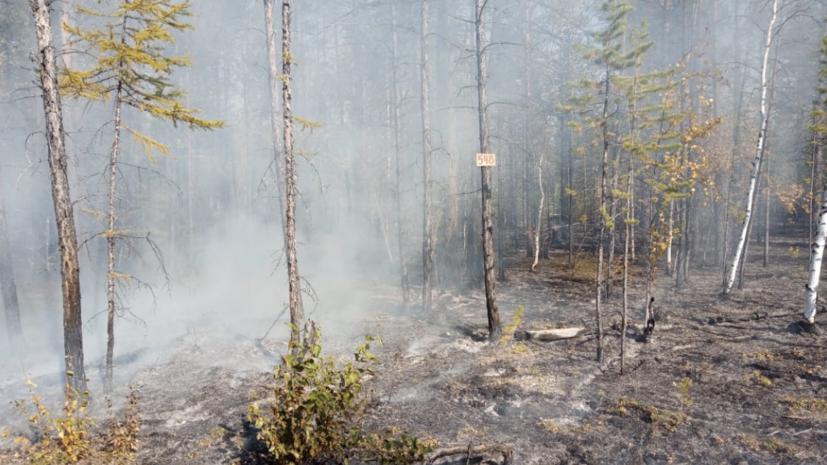 В районе Якутска тушат два лесных пожара