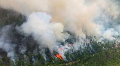 В МЧС рассказали о ситуации с природными пожарами в Якутии