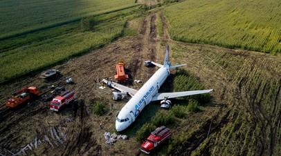 «Идём правее, на солнце, вдоль рядов кукурузы»: как родилась знаменитая фраза после посадки самолёта A321