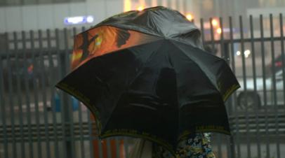 В Приморье спасатели предупредили о ливневых дождях и подъёме уровня рек