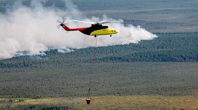 В России за сутки ликвидировали 35 лесных пожаров