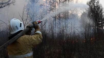 В России за сутки потушили 39 лесных пожаров