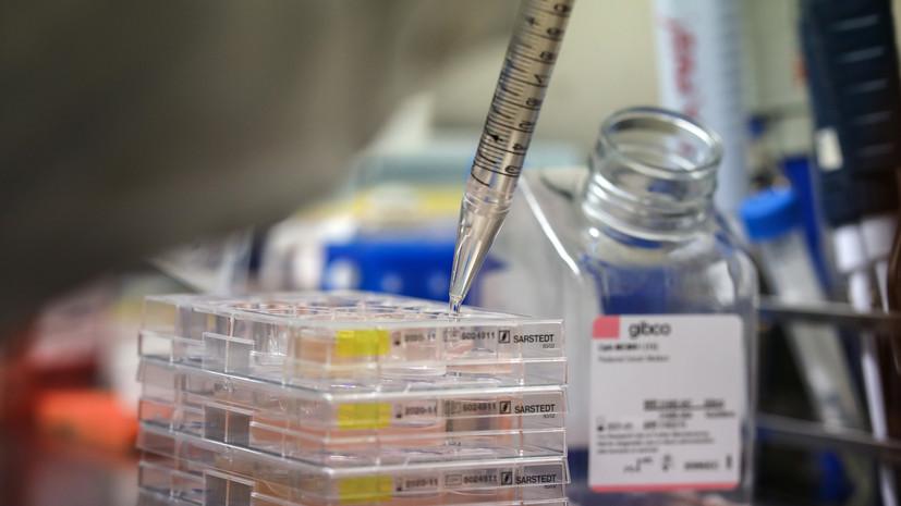 В Турции заявили о новом пике пандемии коронавируса