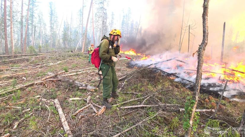 Площадь лесных пожаров в Ростовской области достигла 900 га
