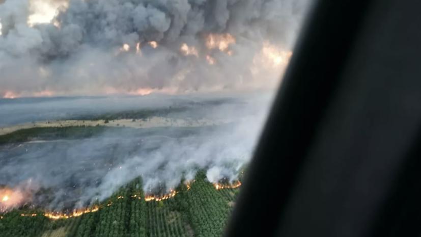 Площадь природного пожара в Ростовской области превысила 1500 га