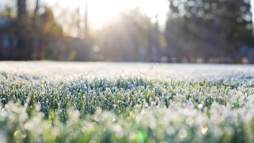 В Курганской области ожидаются заморозки