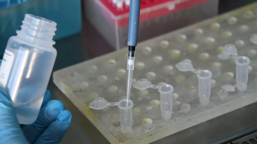 Клинические испытания вакцины от «Вектора» завершат 30 сентября