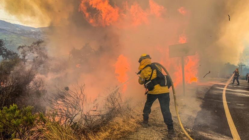 Площадь лесных пожаров в Калифорнии побила исторический рекорд