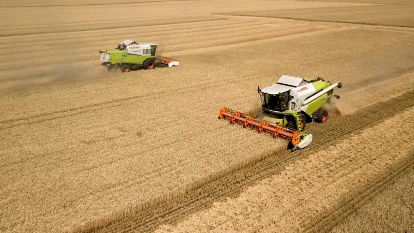 В Приморье завершили уборку ранних зерновых