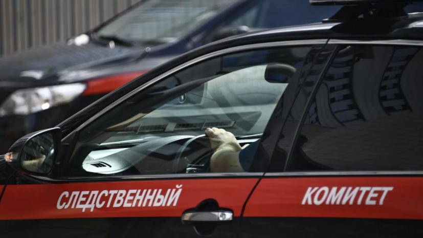 Во Владимирской области задержан напавший на девочку грабитель