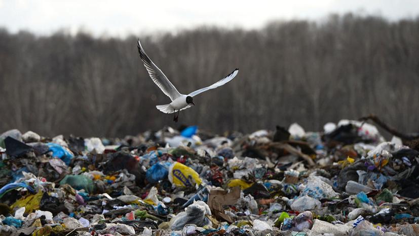 В Ялте прокомментировали работу по ликвидации свалок строительного мусора