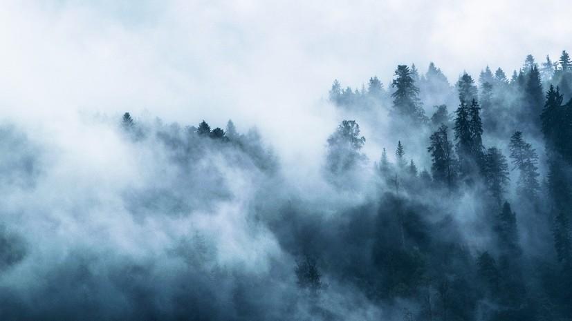 МЧС предупреждает о густом тумане в Курганской области