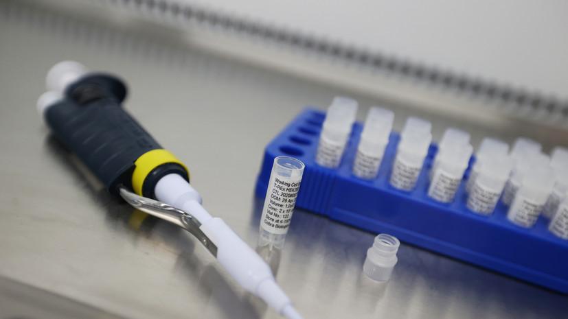 В России за сутки зафиксировано 5670 случаев коронавируса