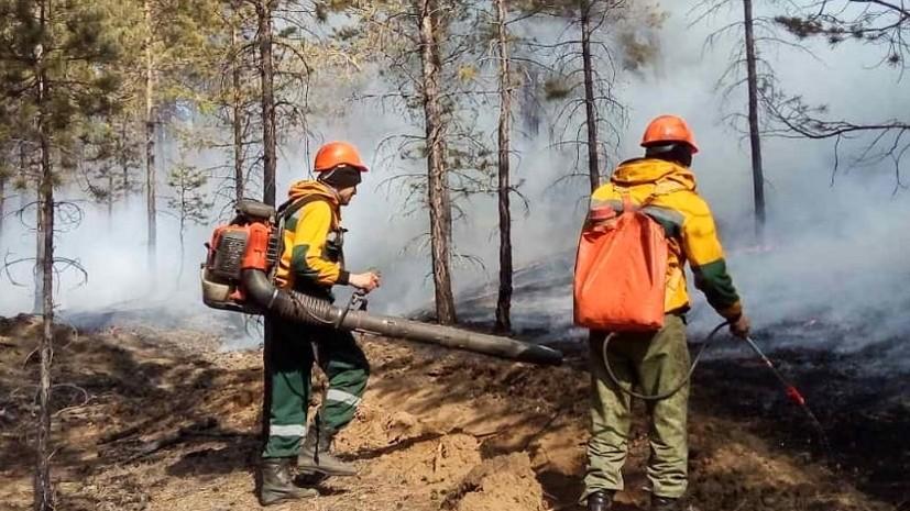 Лесопожарные службы потушили в России 14 природных пожаров за сутки