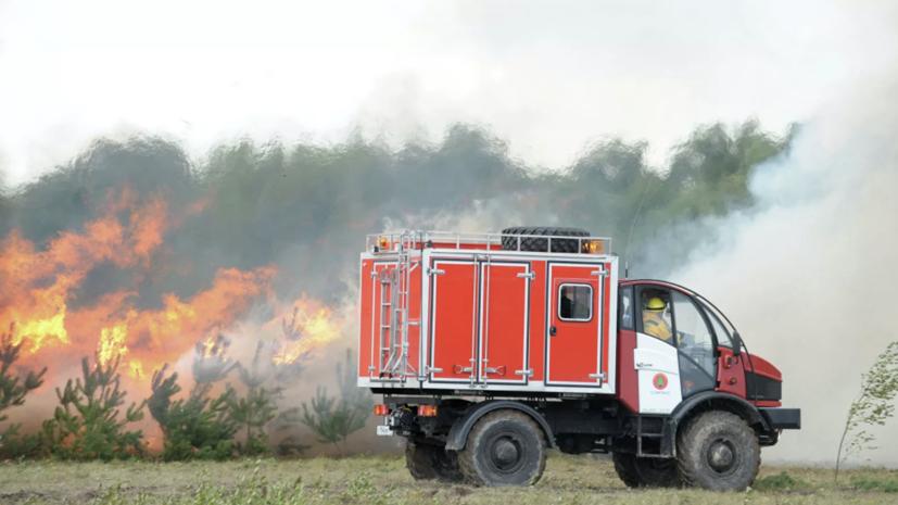 Лесопожарные службы потушили в России 11 природных пожаров за сутки