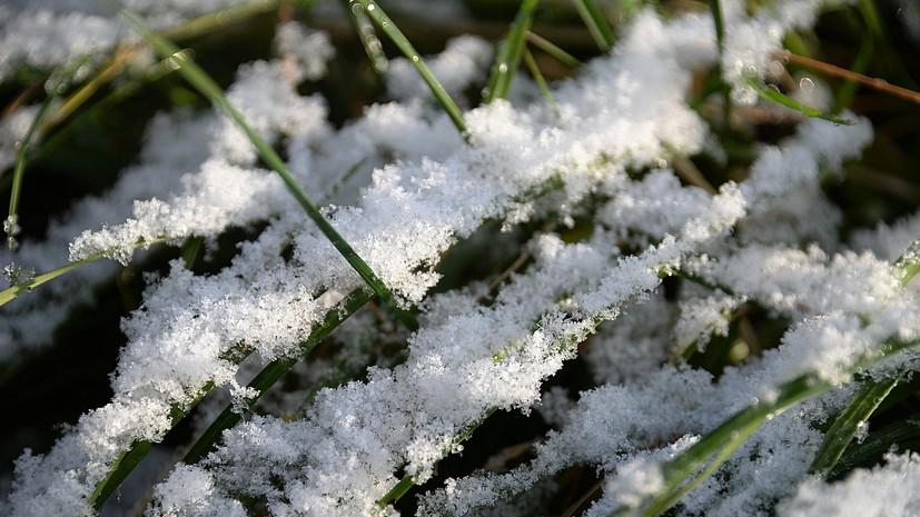 Синоптики предупредили о мокром снеге в Свердловской области