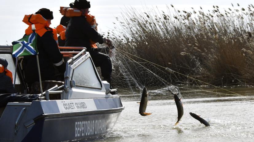 Росрыболовство за год оштрафовало браконьеров почти на 150 млн рублей