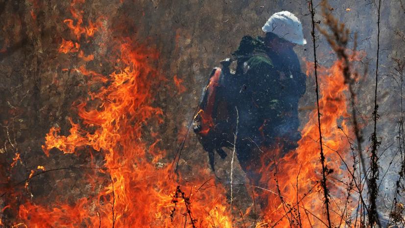 В Воронежской области произошёл природный пожар на площади 15 га