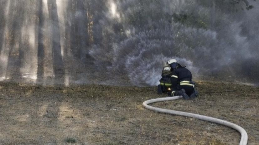 Крупный природный пожар в Воронежской области потушен