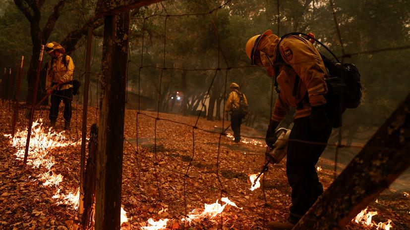 Не менее трёх человек погибли на лесном пожаре в Калифорнии