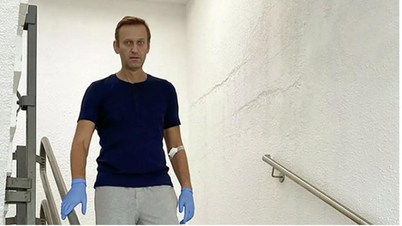МИД заявил о нарушениях техсекретариата ОЗХО по ситуации с Навальным