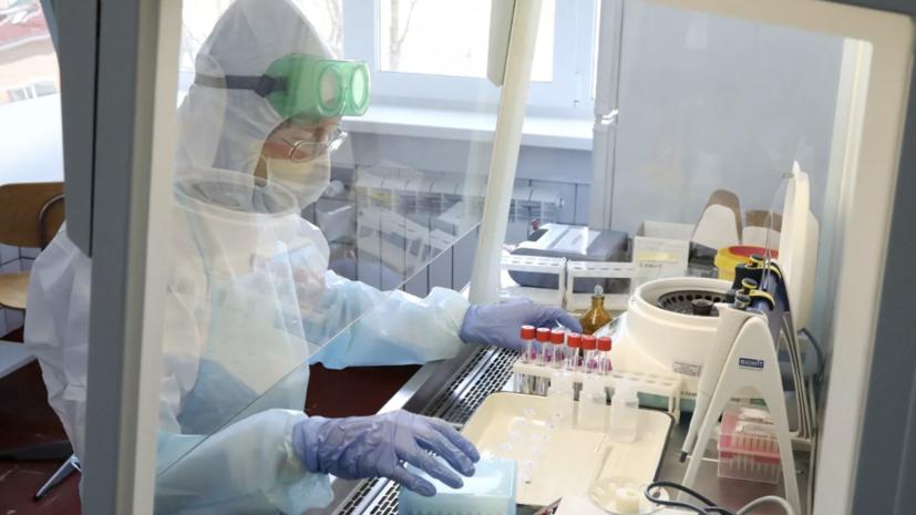 Более 46 млн тестов на коронавирус провели в России
