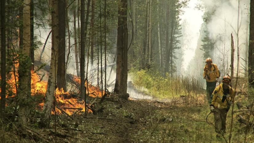 Пожарные из шести регионов направлены на помощь в Воронежскую область