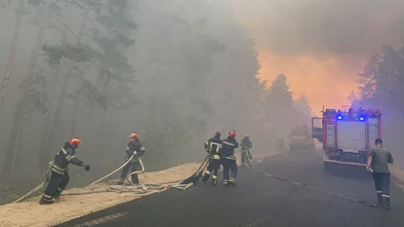 В Луганской области из-за лесных пожаров погибли четыре человека
