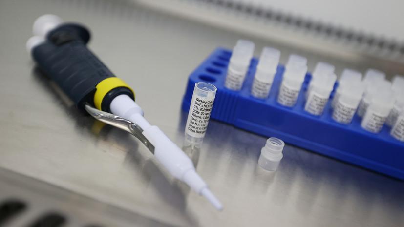 В Москве за сутки провели рекордное число тестов на коронавирус