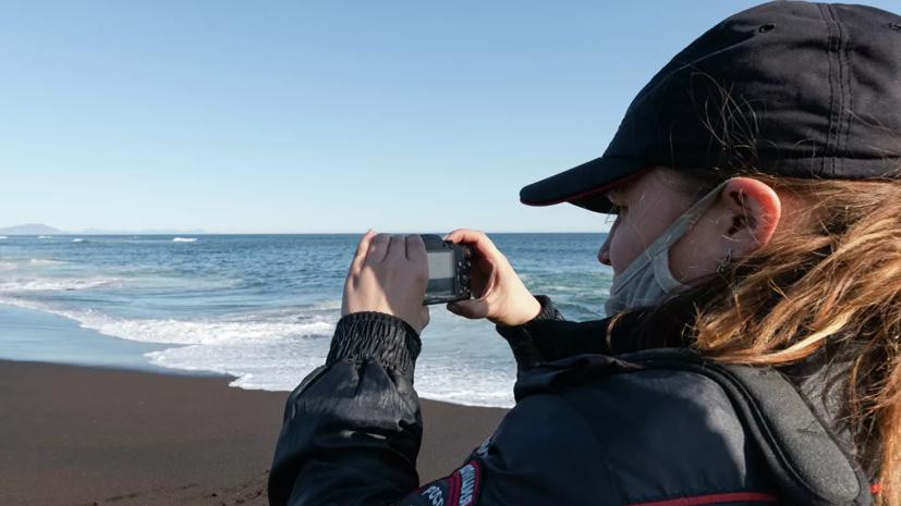 СК начал проверку в связи с гибелью морских животных на Камчатке