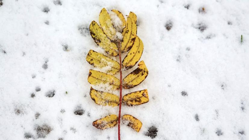 В Красноярске выпал первый снег
