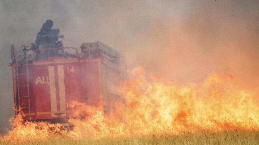 В России за сутки потушили 38 природных пожаров
