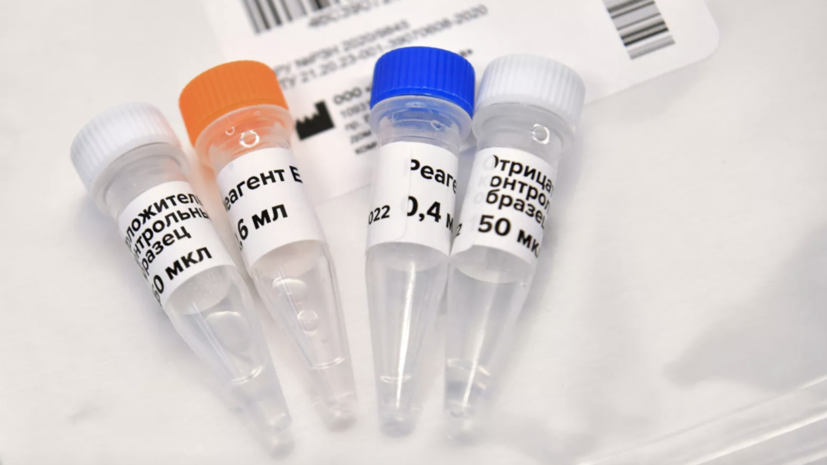 В России создают останавливающий размножение коронавируса препарат