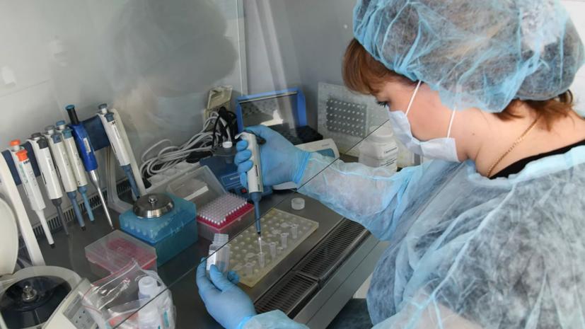 В центре «Вектор» выявили более 80 мутаций коронавируса