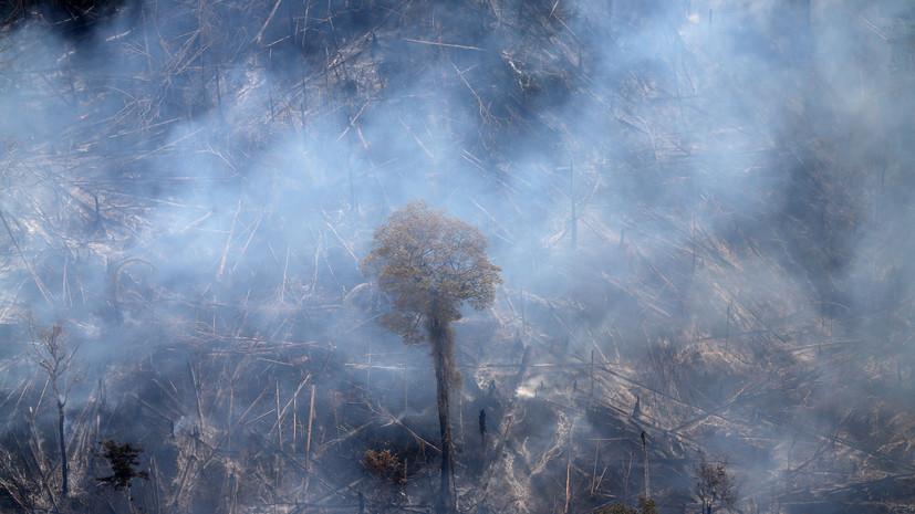 В Бразилии приостанавливают борьбу с лесными пожарами