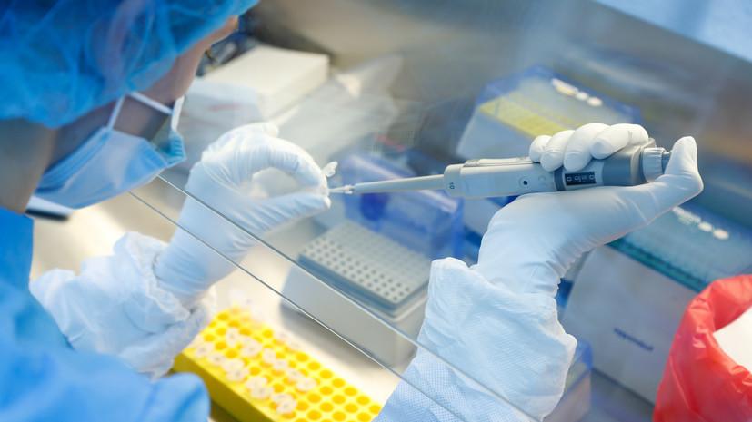 Число проведённых в Москве ПЦР-тестов на коронавирус превысило 10 млн