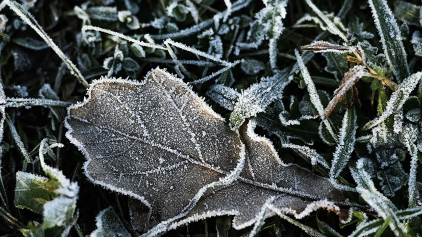 МЧС предупредило о резком похолодании в Оренбургской области