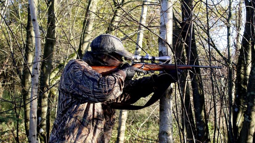 В России могут усложнить выдачу охотничьих билетов