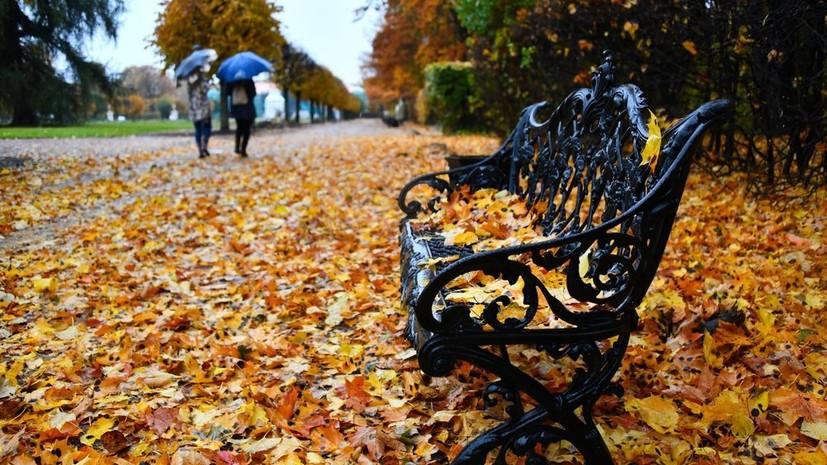 В Москве 31 октября ожидается до +9 °С