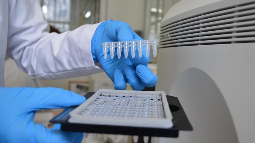 В Молдавии за сутки выявили 839 новых случаев коронавируса