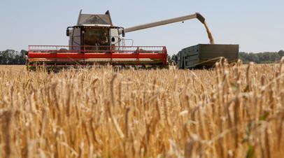 Уборка зерна в Киевской области