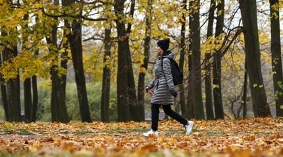 Синоптик объяснил аномальное тепло в центре Европейской России