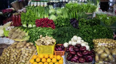 В Ставропольском крае рассказали о росте производства тепличных овощей