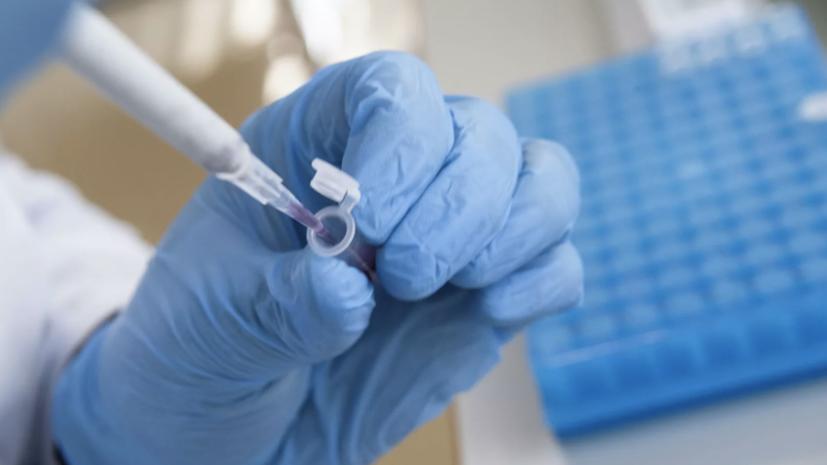 В России за сутки выявили 20 396 новых случаев коронавируса
