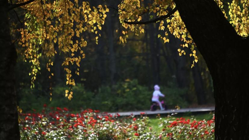 Синоптики предупредили о затяжном похолодании в России