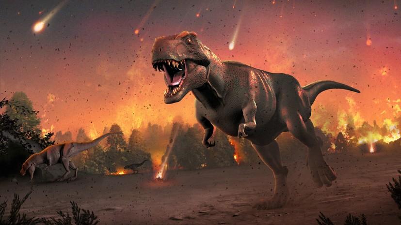 Эволюционный потенциал: учёные опровергли теорию о начале вымирания динозавров до падения метеорита