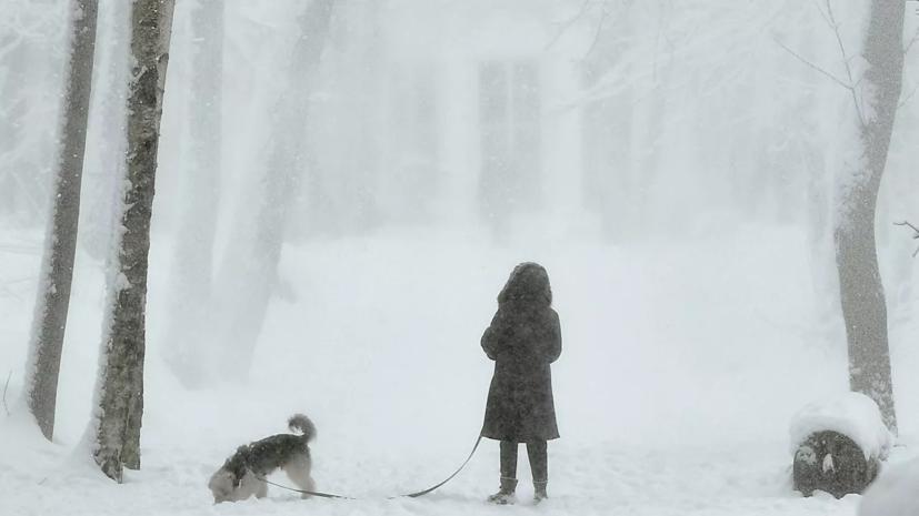 Синоптики предупредили о сильном снегопаде в Москве