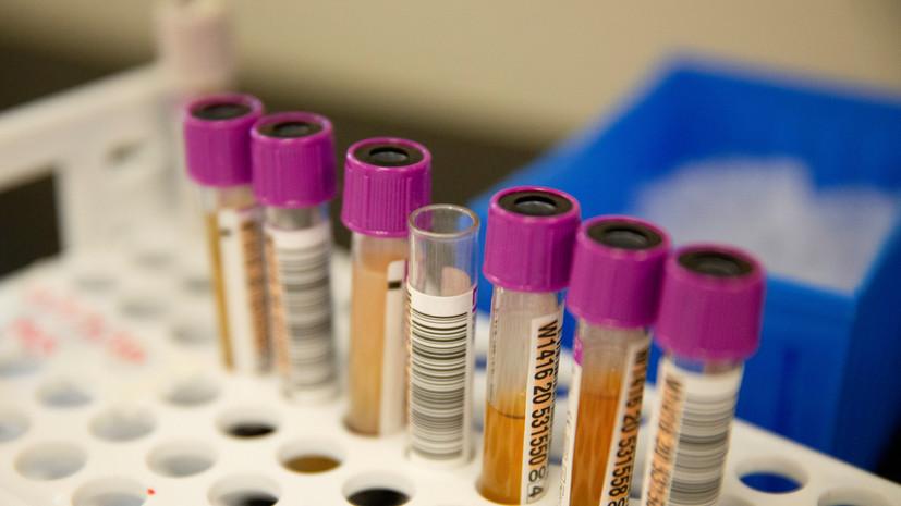 В России за сутки проведено 452 тысячи тестов на коронавирус